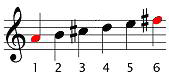 The sixth note is the relative minor